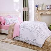 HOLA home 芮香雙面雲絨床包兩用被組 雙人
