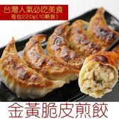【海肉管家-全省免運】日式黃金韭菜煎餃x12包(220g±10%/包 每包10粒入)