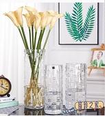 花瓶 富貴竹花瓶擺件玻璃透明水養水培直筒家用客廳插花裝飾TW【風鈴之家】