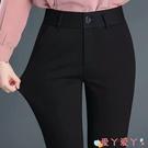 西裝褲 韓國站 上班西褲女直筒工作褲正裝褲職業女士西裝褲黑色小腳褲 愛丫 新品