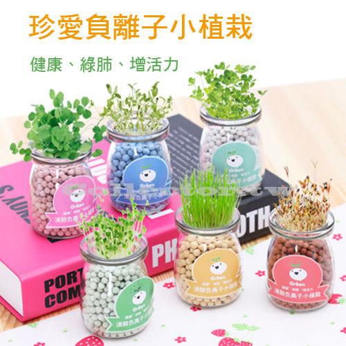 珍愛負離子小植栽 水培盆栽 創意辦公室DIY小盆景 桌面迷你可愛微景觀植物