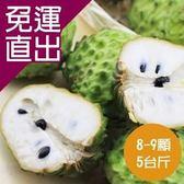 沁甜果園SSN. 台東鳳梨釋迦(8-9顆裝,5台斤)【免運直出】