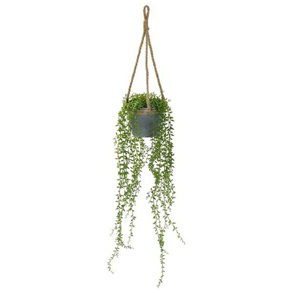 人造植物吊飾 HANGING HA31956GN NITORI宜得利家居