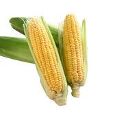 非基因改造超甜玉米2穗/組