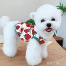 寵物服 可愛草莓馬甲狗狗貓咪防打結小型犬泰迪寵物雪納瑞比熊衣服 快速出貨