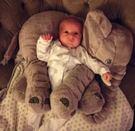 大象抱枕 靠枕 嬰兒枕 安撫枕 哺乳輔助枕042585通販屋