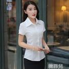 短袖襯衫 韓版白襯衫女短袖新款潮職業裝修身半袖工作服學院女襯衣大碼女裝 韓菲兒