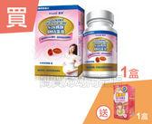 惠氏媽媽藻油DHA 60粒*1(此商品不參與折扣活動)+孕哺兒哺多多哺乳茶40g*1