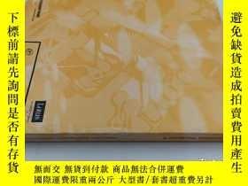 二手書博民逛書店lotus罕見domino designer 5Y19139