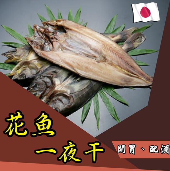花魚一夜干(1隻約330g),日式鹽漬風乾,魚肉肥美扎實可口