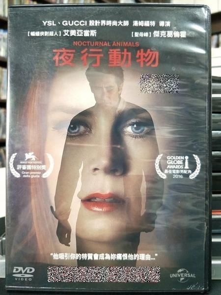 挖寶二手片-P72-002-正版DVD-電影【夜行動物】-艾美亞當斯 艾米漢默 傑克葛倫霍 麥可夏儂(直購價)