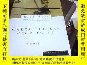 二手書博民逛書店WHERE罕見THE SEA USED TO BEY16335