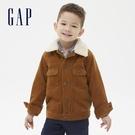 Gap男幼童 保暖燈芯絨紐扣拉鍊夾克 600585-棕色