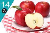 【優果園】美國富士蘋果★14入/箱★每顆約350g
