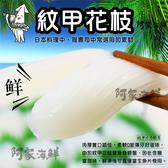【生食級】大紋甲花枝 800g±10% 解凍即食 花枝 握壽司刺身 生魚片 滑嫩口感 Q彈可口