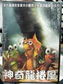 挖寶二手片-B41-正版DVD-動畫【神奇龍捲風】-國語發音(直購價)