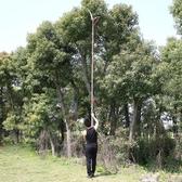 園林工具 修剪樹枝果樹園藝剪刀高枝剪高空鋸子伸縮修枝剪 摘果器