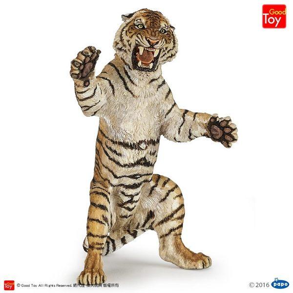 【Good Toy】法國 PAPO 50208 野生動物 老虎(站姿) Standing Tiger