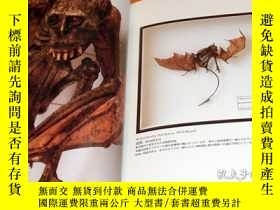 二手書博民逛書店Cryptid罕見Specimen Box book RARE monster uma dragon crypto