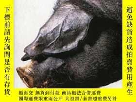二手書博民逛書店Far罕見From The Land: Black Pig s