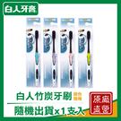 【白人】竹炭護理牙刷 /支 (顏色隨機)