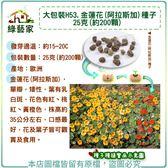 【綠藝家】大包裝H53.金蓮花(阿拉斯加)種子25克(約200顆)