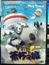 挖寶二手片-P03-286-正版DVD-動畫【呆呆熊的茶杯之旅 電影版】-國語發音(直購價)
