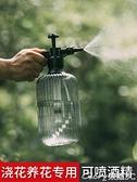 灑水壺 園藝氣壓式噴壺消毒專用澆花家用高壓小噴水噴霧器澆水壓力灑水壺  【新品】 618購物
