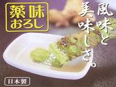 日本製 WASABI 山葵 芥末醬 生薑 人蔘 磨具 磨泥器 搗泥器  《SV3615》