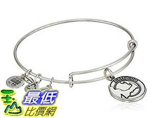 [美國直購]  Alex and Ani Places We Love Cape Cod Expandable Wire Bangle Bracelet, 7.25 手鏈