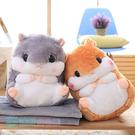 現貨 可愛倉鼠兩用抱枕毯 毛毯 絨毛靠枕...