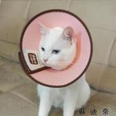 貓項圈-伊麗莎白圈保護恥辱圈