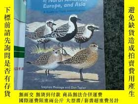 二手書博民逛書店shorebirds罕見of north america europe and asiaY267761 Ste