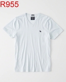 AF A&F Abercrombie & Fitch A & F 男 當季最新現貨 短袖T恤 AF R955