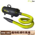 【最新版】bigboi寵物乾燥吹風機 MINI PLUS+ 吹水機 寵物美容 寵物用品 寵物吹水機