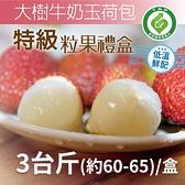【家購網嚴選】大樹生產履歷冠軍牛奶玉荷包特級粒果禮盒3台斤/盒(60~65顆) 型農推薦,低溫配送