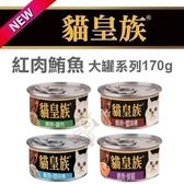 [48罐組] *WANG*貓皇族 《大罐鮪魚 系列 》170g 一箱 48罐下標區 貓罐頭 紅肉罐頭 特級貓罐