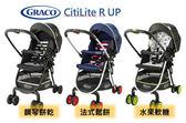 Graco CitiLite R UP BK 手推車 水果軟糖/法式鬆餅/鋼琴餅乾 『121婦嬰用品館』