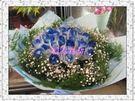 (YF-02)特選33朵藍玫瑰花束全台皆...