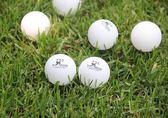 三星球無縫球乒乓球40 三星新材料塑料球比賽用球【快速出貨】