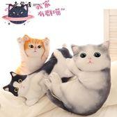 可愛仿真貓咪毛絨公仔抱枕韓國搞怪3d立體喵星人抱著睡覺娃娃女生【奇貨居】