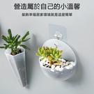 【壁掛盆栽】半圓款 牆壁懸掛式水培小花盆 免釘免鑽無痕插花瓶