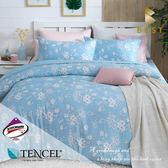 天絲床包兩用被四件組 特大6x7尺 靜蜜  頂級天絲 3M吸濕排汗專利 床高35cm  BEST寢飾