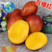 風之果 枋山寶島級香甜42年老欉愛文芒果禮盒5台斤(9顆)