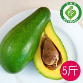 (產銷履歷)台東青農酪梨5台斤免運組