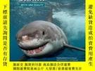 二手書博民逛書店Great罕見White SharkY255562 Alexandrine Civard-racinais F