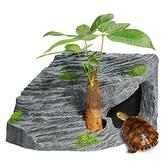 一佳寵物館 烏龜曬臺龜臺爬臺石頭曬背巴西龜缸造景爬梯爬坡臺爬寵躲避洞浮島