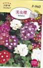 [美女櫻種子] 各式觀賞花卉種子 香草種子 蔬菜水果種子 . 單買種子。郵局運費40元起
