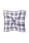 SST&C 男裝 格紋口袋巾 | 3012003004