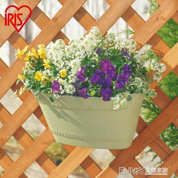 懸掛式花盆愛麗思IRIS PROVINCE壁掛式長形花盆 多色可選 樹脂花盆350/400 檸檬衣舎